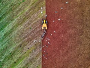 An aerial view of a Tractor ploughing a field and gulls in the sky above circling