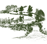 drawing of a tree lined river